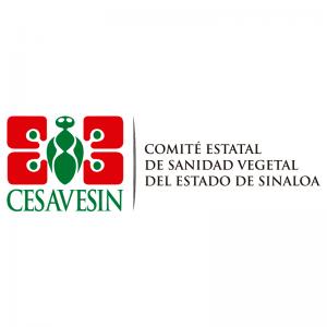 AL INSTANTE COMUNICACIONES - CESAVESIN