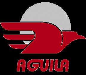 AL INSTANTE COMUNICACIONES - Grupo Aguila